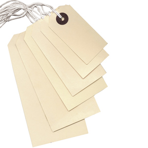Strung Tags - 21 x 13mm white